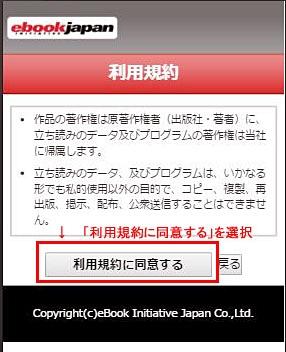 ebook-3.JPG